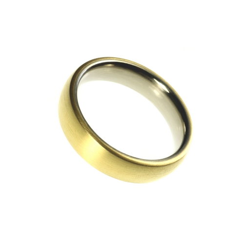 Gold & Titanium Ring