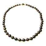 Black/Brown Round Pearl Necklace with Gold Plated Clasp